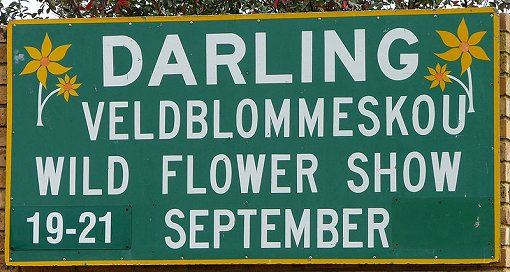 darling-flower-show