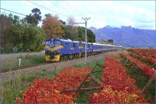 blue-train-south-africa